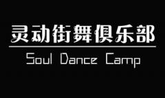 灵动街舞俱乐部选择纳客会员管理软件标准版
