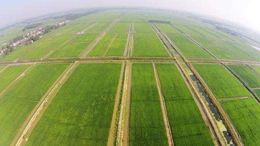 潜江虾农生态有限公司选择纳客会员管理系统
