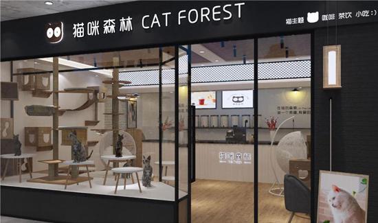 猫咪森林签约久久客会员管理系统